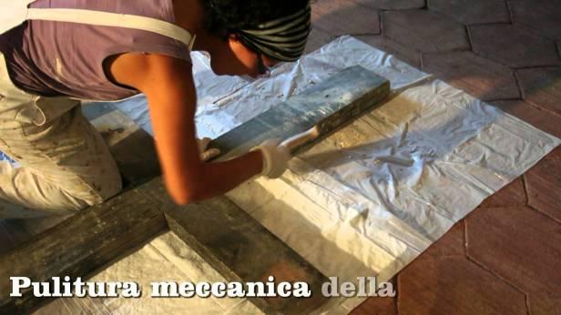 Rosaria Catania Cucchiara